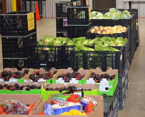 FoodShareProduce2