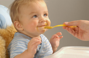 article-make-own-baby-food