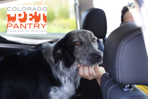 Image of a dog in the backseat of a car with the Colorado Pet Pantry logo.