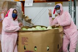 Food Bank team members dressed as bunnies.